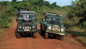 Jeep Safari at Yala National Park